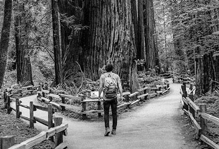 Photo d'une homme à la croisée de deux chemins en forêt